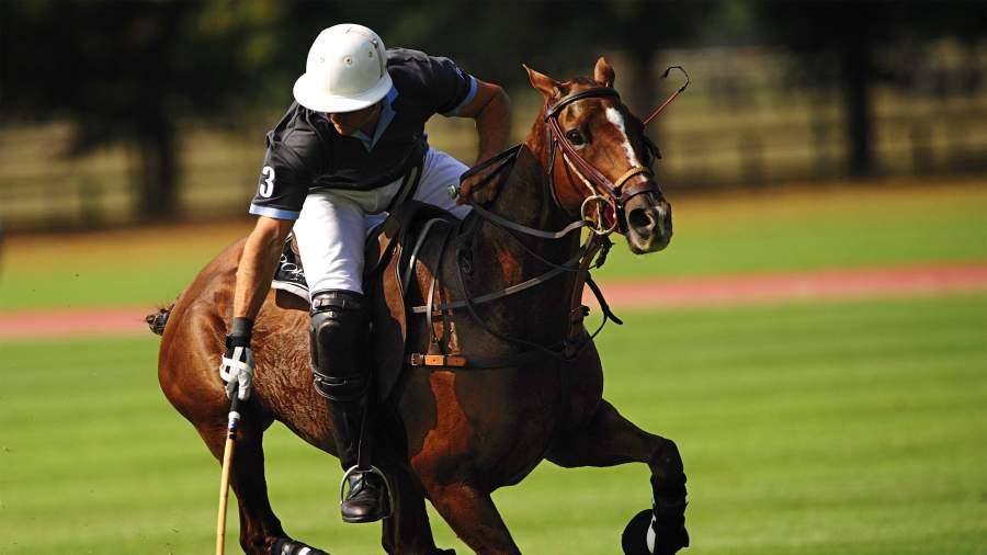 POLO - Torjagd zu Pferd