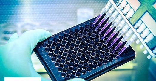 Dr .Seibt Genomics GmbH